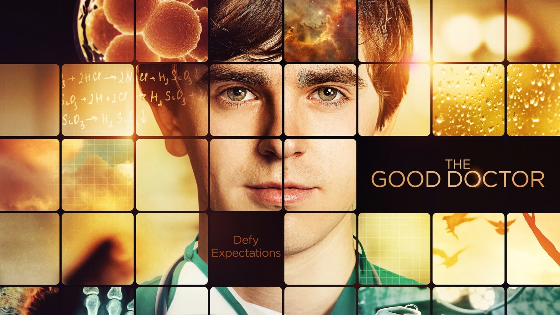Ver The Good Doctor Online Gratis En Español